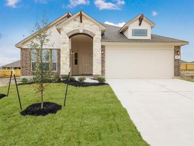 Hutto Single Family Home For Sale: 520 Tanda Ln