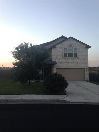 Kyle Single Family Home For Sale: 1065 Four Seasons Farm Dr