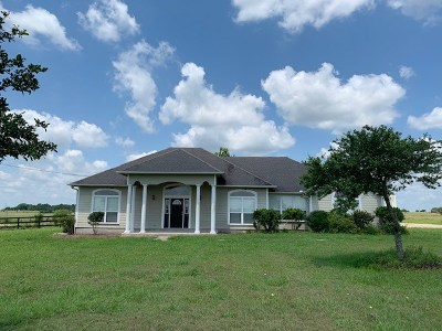 Schulenburg TX Single Family Home For Sale: $325,000