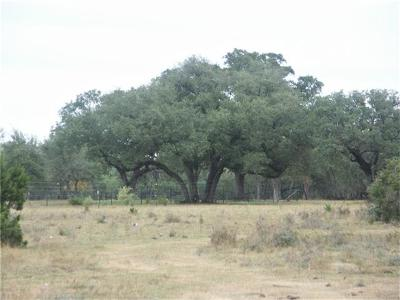 Wimberley Farm For Sale: 5000 Water Park Rd