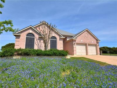 Dripping Springs Single Family Home For Sale: 122 Catfish Cv