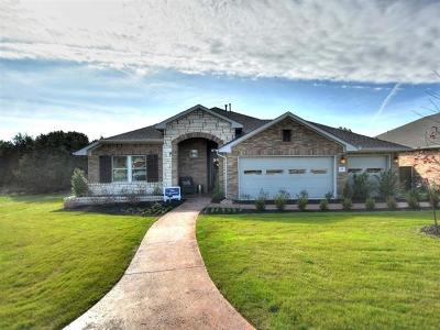 Kyle Single Family Home For Sale: 161 Cypress Forest Dr