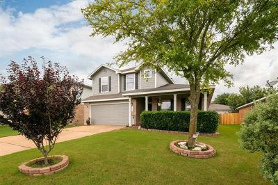 Kyle Single Family Home For Sale: 135 Remington Dr
