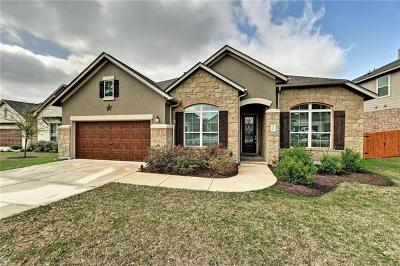 Dripping Springs Single Family Home Pending - Taking Backups: 378 Quartz Dr