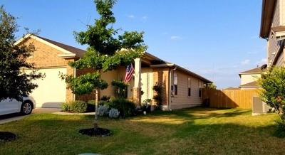 Georgetown Single Family Home For Sale: 1023 Plateau Trl