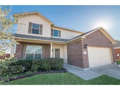 Pflugerville Single Family Home For Sale: 17924 Masi Loop