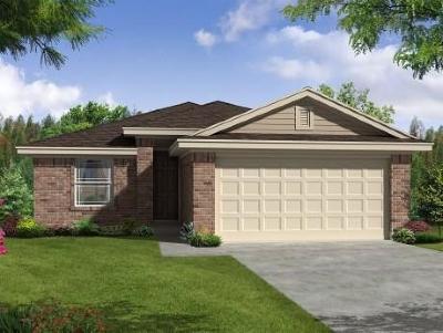 Kyle Single Family Home For Sale: 220 Evening Dusk Dr