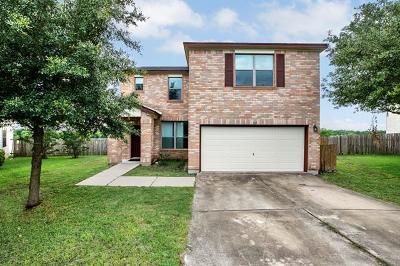 San Marcos Single Family Home For Sale: 107 Espada Dr