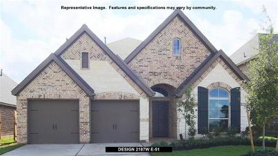 San Marcos Single Family Home For Sale: 523 Field Corn Ln