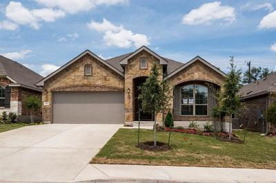 Georgetown Single Family Home For Sale: 117 Crescent Heights Dr