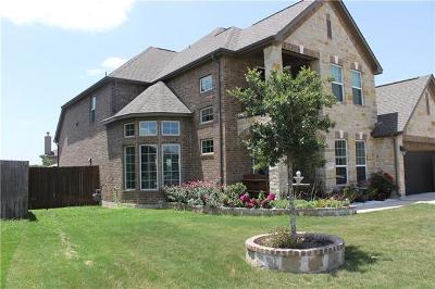 Hays County Single Family Home For Sale: 166 Hazy Sunshine Way