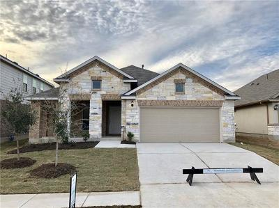 Pflugerville Single Family Home For Sale: 17000 Lathrop Ave