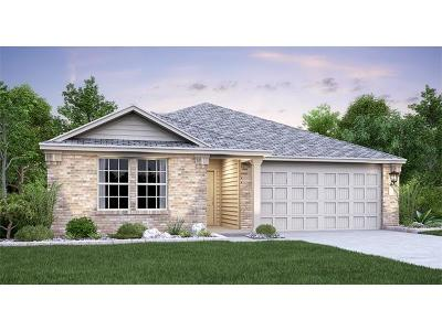 Kyle TX Single Family Home For Sale: $246,986