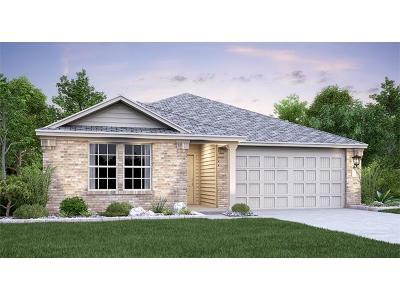 Kyle Single Family Home For Sale: 280 Jackson Blue Ln