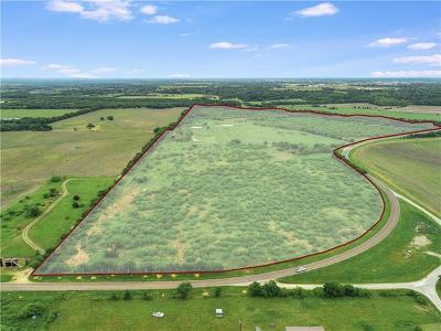 Lockhart Farm For Sale: 542 Fm 672