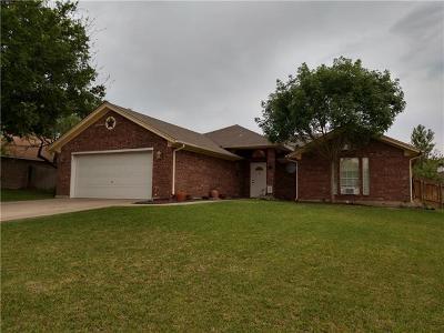 Burnet Single Family Home For Sale: 807 Dixie Dr