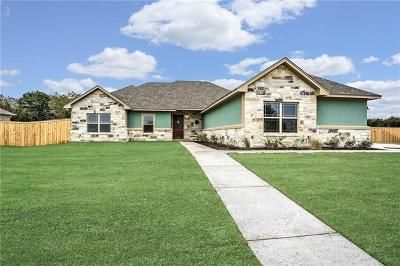 Belton Single Family Home For Sale: 8361 Goliath Dr