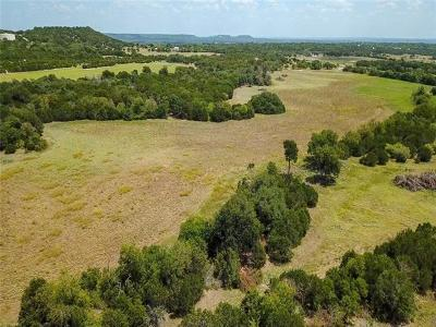 Kempner Farm For Sale: Tract #12 Cr 4830