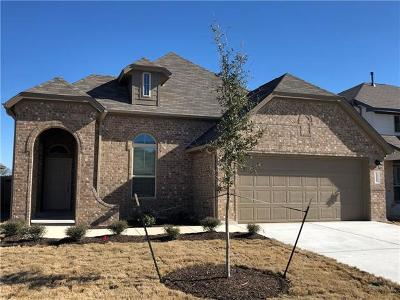Travis County Single Family Home For Sale: 13217 Mariscan St