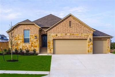 Hays County Single Family Home For Sale: 113 Medina Hills Ct