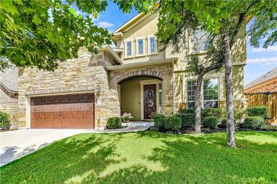 Round Rock Single Family Home For Sale: 3822 Skyview Way