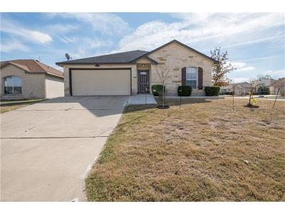 Williamson County Single Family Home For Sale: 300 Moonstone Dr
