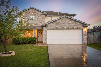 New Braunfels Single Family Home For Sale: 356 Scenic Mdw