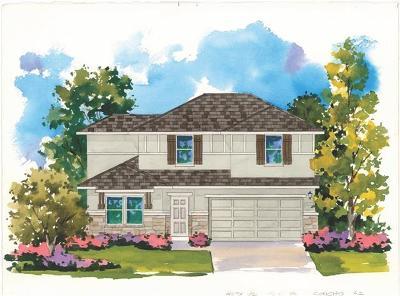 Round Rock Single Family Home For Sale: 7630 Leonardo Drive