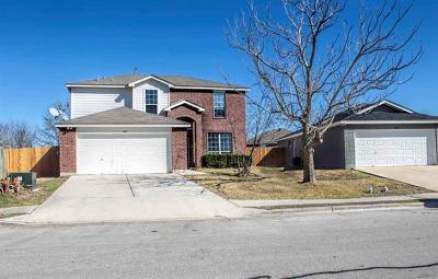 Lockhart Single Family Home For Sale: 401 Thunderstorm Ave