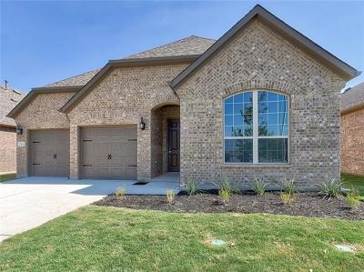 Leander Single Family Home For Sale: 524 Mistflower Springs Dr