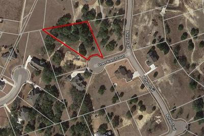 Residential Lots & Land For Sale: 104 Green Branch Ct