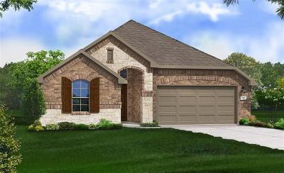 Pflugerville Single Family Home For Sale: 21029 Abigail Way