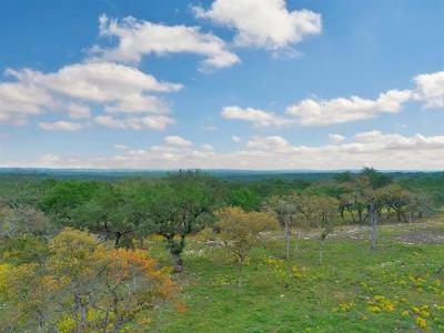 Dripping Springs Residential Lots & Land For Sale: 448 Stallion Lane