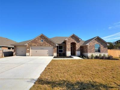 Kyle Single Family Home For Sale: 374 Cypress Forest Dr