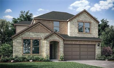 Round Rock Single Family Home For Sale: 5904 Agostino Drive