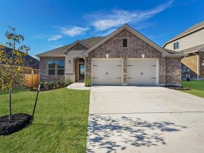 Pflugerville Single Family Home For Sale: 3605 Winter Wren Way