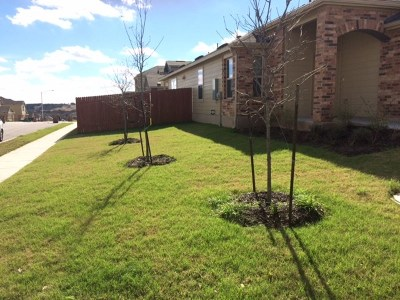 Hays County, Travis County, Williamson County Single Family Home For Sale: 10128 S Crescendo Ln N