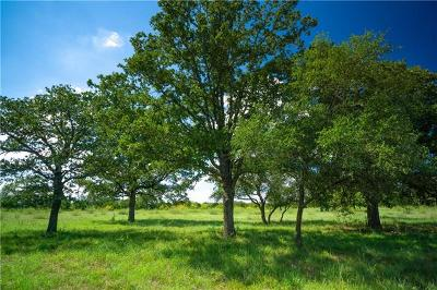 Williamson County Residential Lots & Land For Sale: Tract 16 Cross Creek Rd
