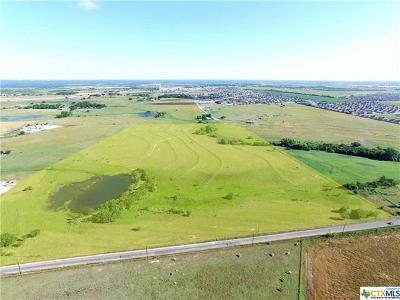 Farm For Sale: County Rd 314
