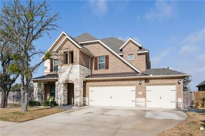 Leander Single Family Home Pending - Taking Backups: 4421 Big Tree Trl