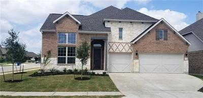 Leander Single Family Home For Sale: 909 Anahuac Dr