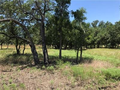 Residential Lots & Land For Sale: 541 Oak Point Ct
