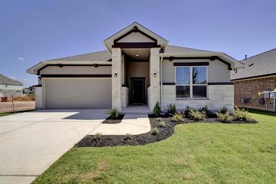 Round Rock Single Family Home For Sale: 6872 Catania Loop