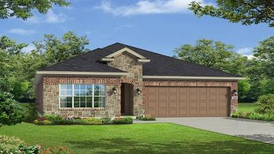 Round Rock Single Family Home For Sale: 5213 Lusso Trl