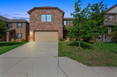 Georgetown Single Family Home For Sale: 115 Mancos Dr