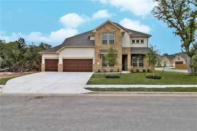 Round Rock Single Family Home For Sale: 3820 Stanyan Dr
