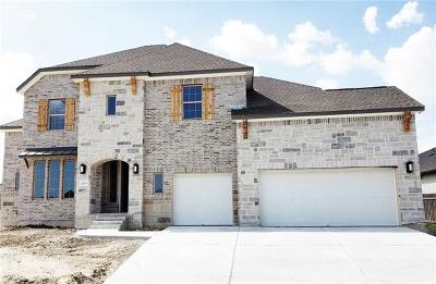 Georgetown Single Family Home For Sale: 2228 Rabbit Creek Dr