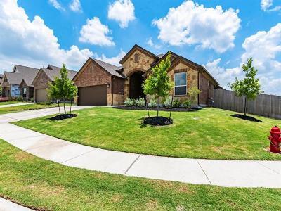 Buda Single Family Home For Sale: 310 Betony Loop