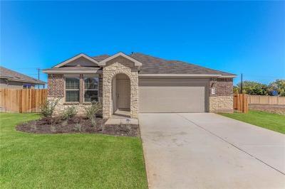 Kyle Single Family Home For Sale: 148 Juniper Springs Rd