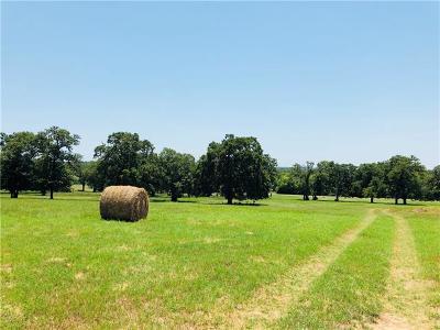 Farm For Sale: 2278 N Fm 487